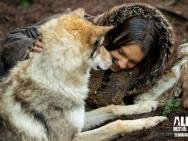 《阿尔法:狼伴归途》开画形势好 史诗冒险视效赞