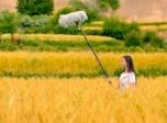 美丽的稻城亚丁,美的想和你此生共度