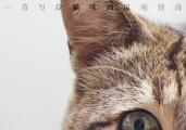 """《爱猫之城》9.22公映 牛奶咖啡""""解读""""《猫语》"""