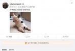 10月29日,哈文在微博发文宣布李咏去世。有网友发现,李咏在2017年频繁与女儿微博互动,在多条微博下留下可爱表情包回应。