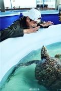 彭于晏晒纪录片片场照 互动小海龟秒变可爱大男孩