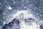 拔叔新片《北极》即将首映 揭幕海南岛国际龙虎国际,龙虎国际客户端,龙虎国际网页登录节