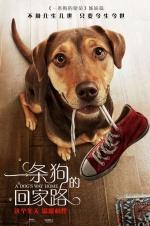 《一条狗的回家路》曝光新预告 狗狗生死逃亡