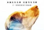 马达为新欢代言 《一条狗的回家路》定档1月18日