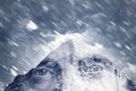 《北極》曝光預告 麥斯·米科爾森極地孤單求生
