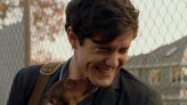 《一条狗的回家路》终极预告 狗狗贝拉唤起网友返乡动力