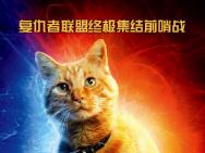 電影《驚奇隊長》發布中文角色海報 大橘C位鎖死