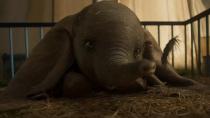 《小飞象》电视预告 大小象互动可爱