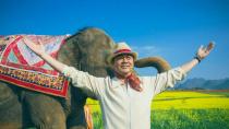 《我的宠物是大象》发布定档预告
