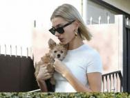 比伯和海莉不同的遛狗方式 遛出爸妈带娃的样子