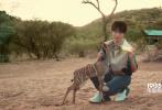 """3月24日,王俊凯工作室发布了一则视频,""""停工""""数月的王俊凯日常终于更新,引发网友一波热情回应。工作室配文表示:""""凯Boss非洲公益行纪录片《K-moment×Hi Africa》即将上线!""""。"""