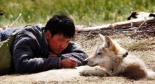 冯绍峰与狼共舞 CCTV6电影频道4月4日12:26为您播出《狼图腾》