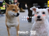 《狗眼看人心》曝光探班照 黄磊闫妮力挺妮蔻首秀