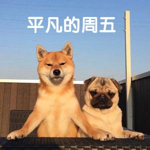 betway必威安卓版下载 5