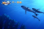 电影《潜艇总动员》曝手绘海报 与观众十年相伴