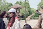 网友偶遇Angelababy独自逛动物园 晒与路人合影