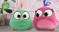 《愤怒的小鸟2》母亲节特辑