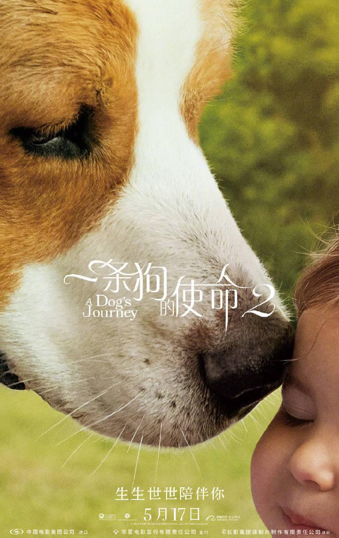 《一條狗的使命2》內地定檔 劉憲華全新加盟