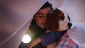 《一条狗的使命2》最萌爱神版预告片
