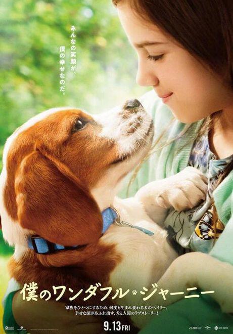 《一条狗的使命2》曝日本海报 少女CJ和狗狗对视