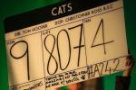真人版《猫》采用动捕技术 缩小演员成真猫体型