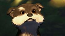 法国动画佳片《白牙》将映 《海兽之子》发布港版预告