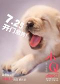 电影《小Q》宣布提档 任达华首次挑战盲人角色