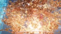 《精灵宝可梦:超梦的逆袭·进化》释出新预告片
