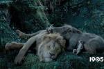 真人《獅子王》口碑國內外差距大:僅特效受認同