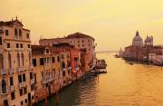 76年光影流转 威尼斯大发快3节水城亮相