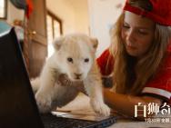 电影《白狮奇缘》发终极预告片 少女携白狮出逃
