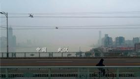 国内首部战疫纪录电影《杭州日夜》开启全国预售