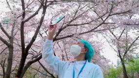 对话《杭州日夜》导演曹金玲 王宝强等众星为四川抗疫加油