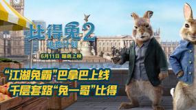 """《比得兔2:逃跑计划》""""江湖兔霸""""角色预告"""