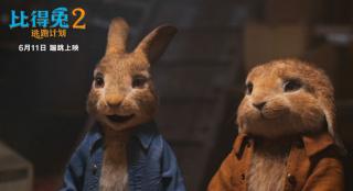 《比得兔2:逃跑计划》配音效果好 郭麒麟获称赞