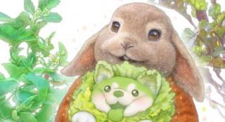 """《比得兔2》跨界合作""""菜狗""""!将推出联名盲盒"""
