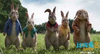 点映获赞 《比得兔2:逃跑计划》将于6月11日上映