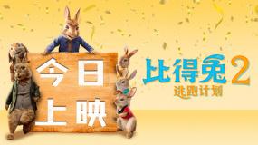 《比得兔2:逃跑计划》6月11日上映预告片