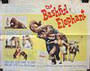 The Bashful Elephant