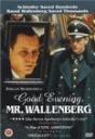 晚安沃伦伯格先生