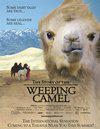 Geschichte vom weinenden Kamel, Die
