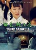 白色栀子花