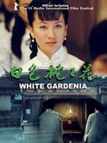 白色梔子花