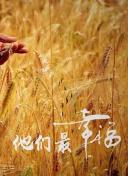 国产中文字幕乱码免费