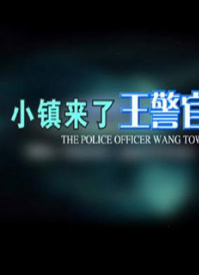 小镇来了王警官