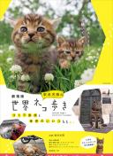 北京:扩大社区家庭医生预约号源数量