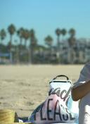 沙滩上的宝莲