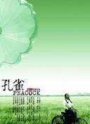 江西昌江问桂道圩段发生决堤险情正在进行封堵作业