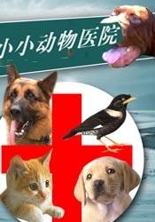 小小动物医院