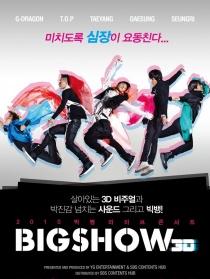 2010 Big Bang演唱会Big Show 3D